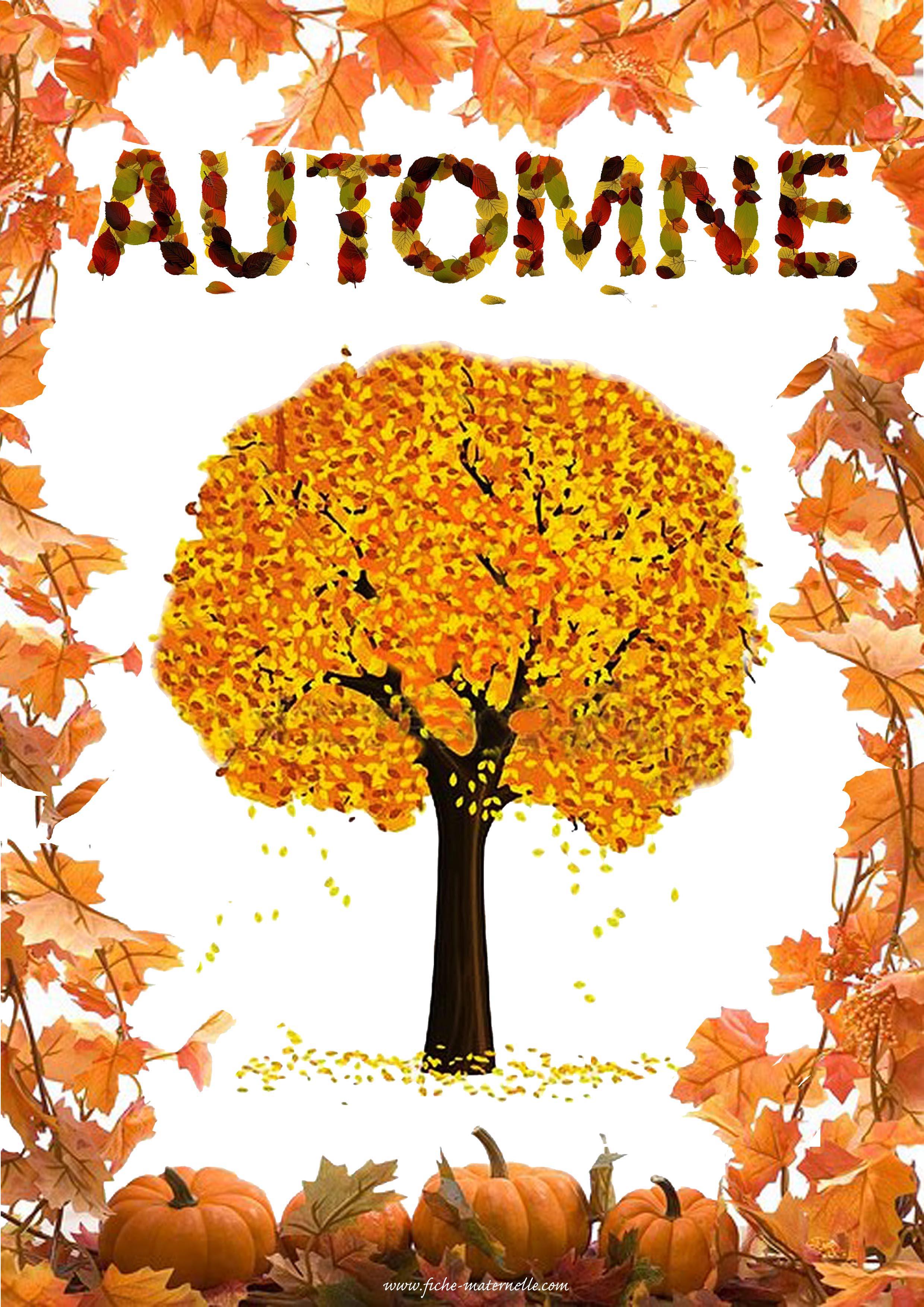 Affichage des saisons en maternelle - L automne dessin ...