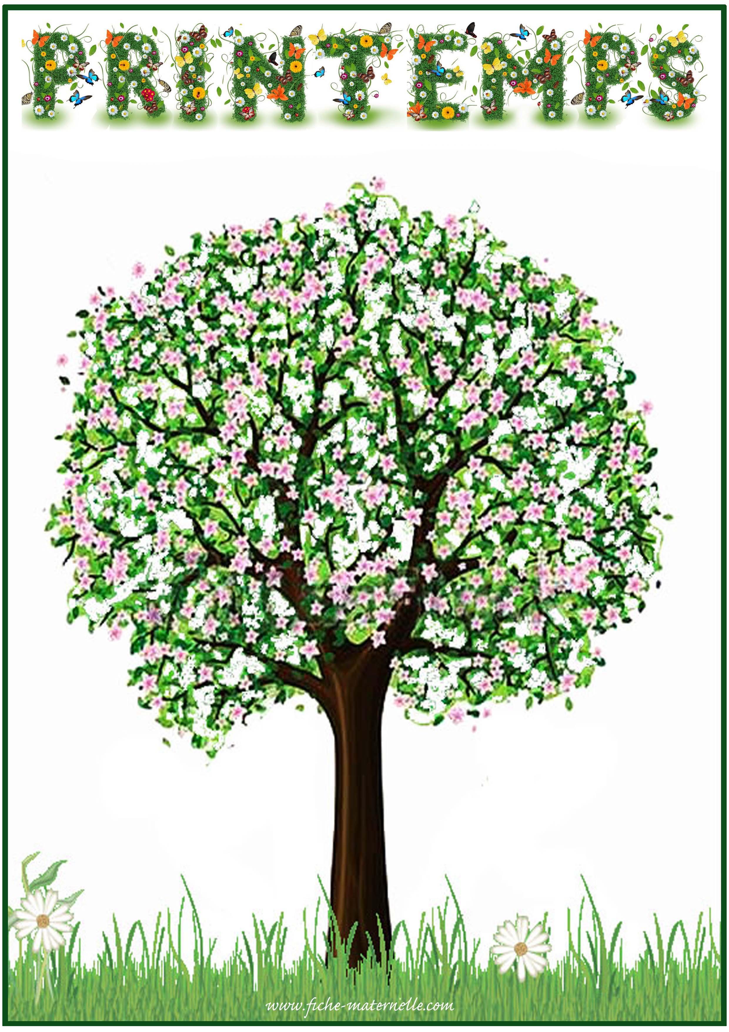 Affichage des saisons en maternelle - Le printemps gs ...