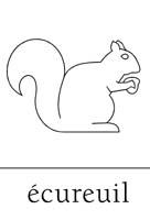Automne en maternelle - Dessiner un ecureuil ...
