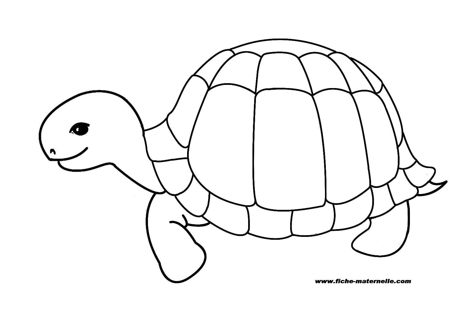 Coloring pages pinterest - Coloriage tortue ...