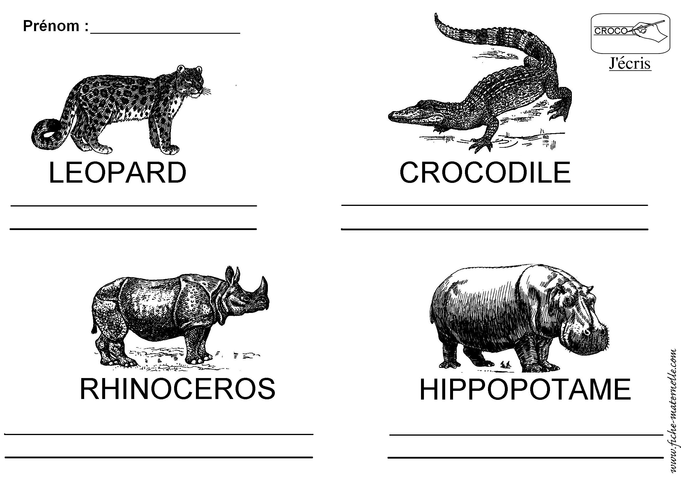 Lecture autour du nom des animaux d 39 afrique - Animaux afrique maternelle ...