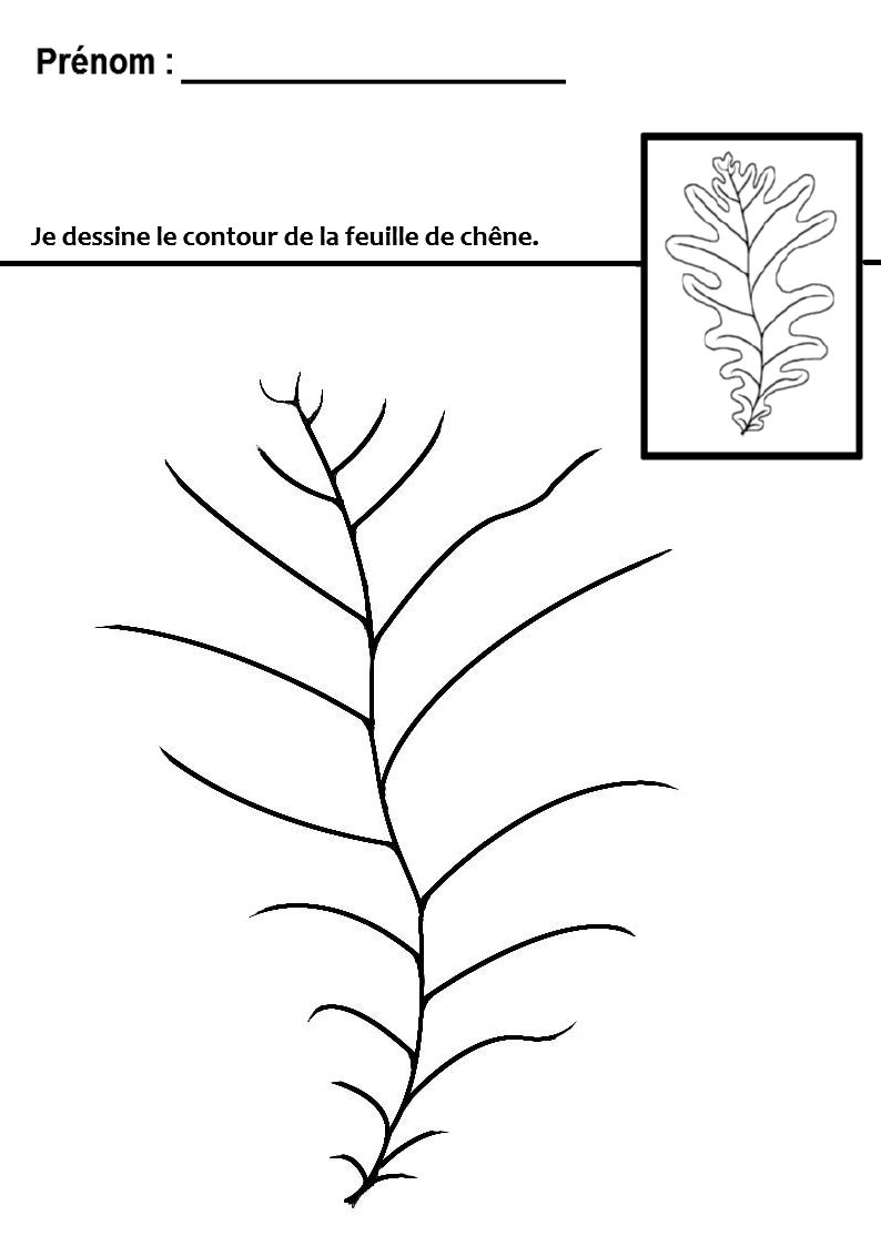 Graphisme sur le th me de l 39 automne tracer des lignes - Dessiner des feuilles d automne ...