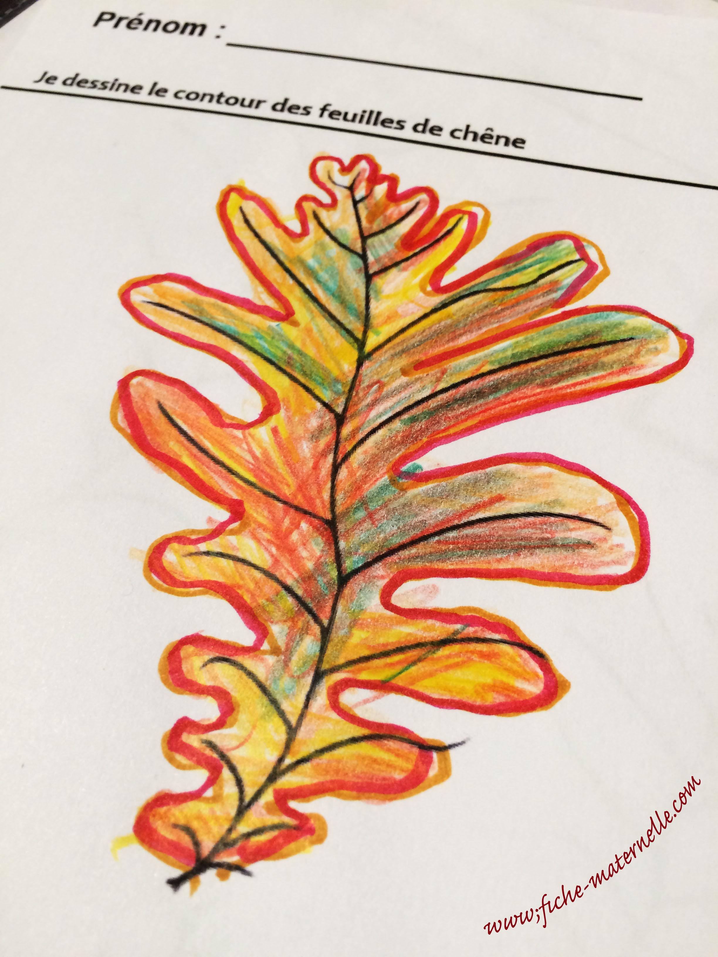 Graphisme sur le th me de l 39 automne la ligne qui ondule - Dessiner des feuilles d automne ...