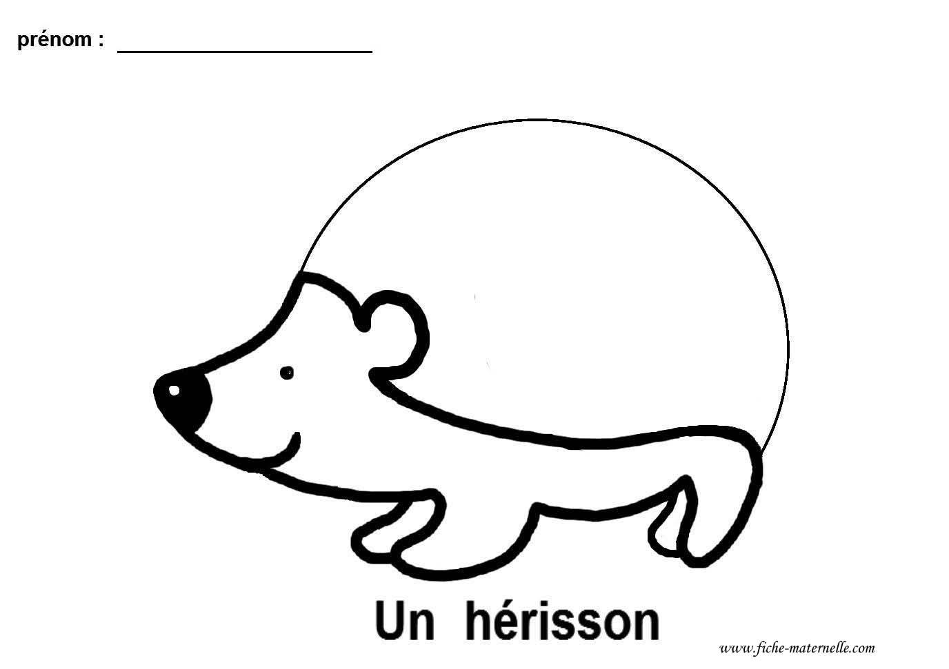 Graphisme gs et ms le herisson lignes bris es - Herisson coloriage ...