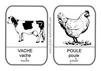 Imagier - Imagier animaux de la ferme ...