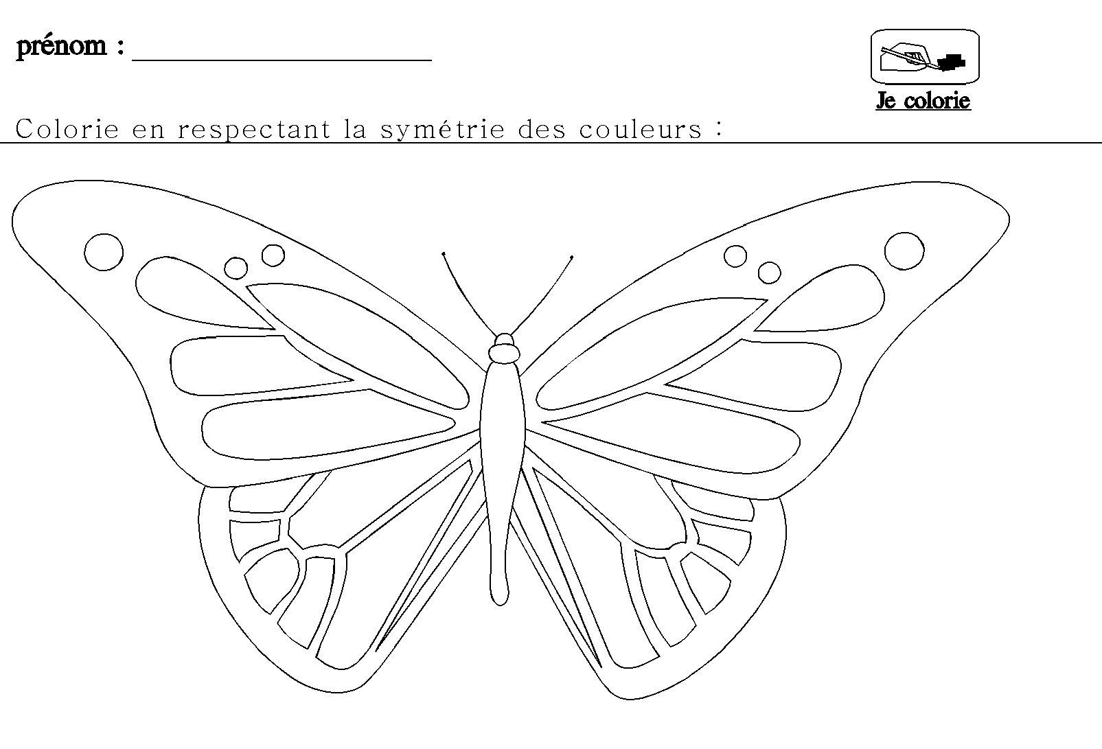 La sym trie en maternelle pour grande section - Papillon maternelle ...