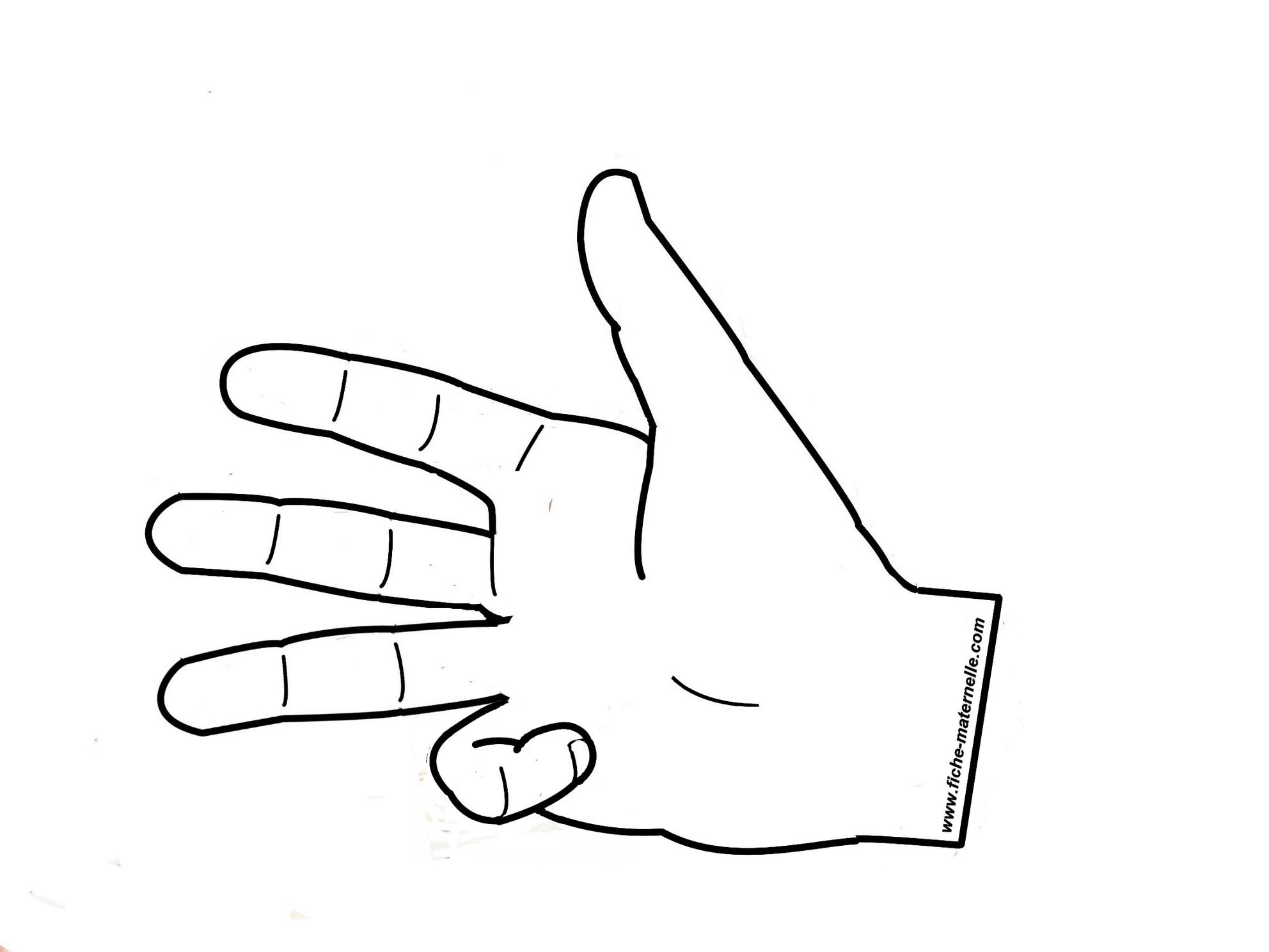 """Compter """"quatre"""" sur les doigts (Le pouce + index + majeur + annulaire ..."""