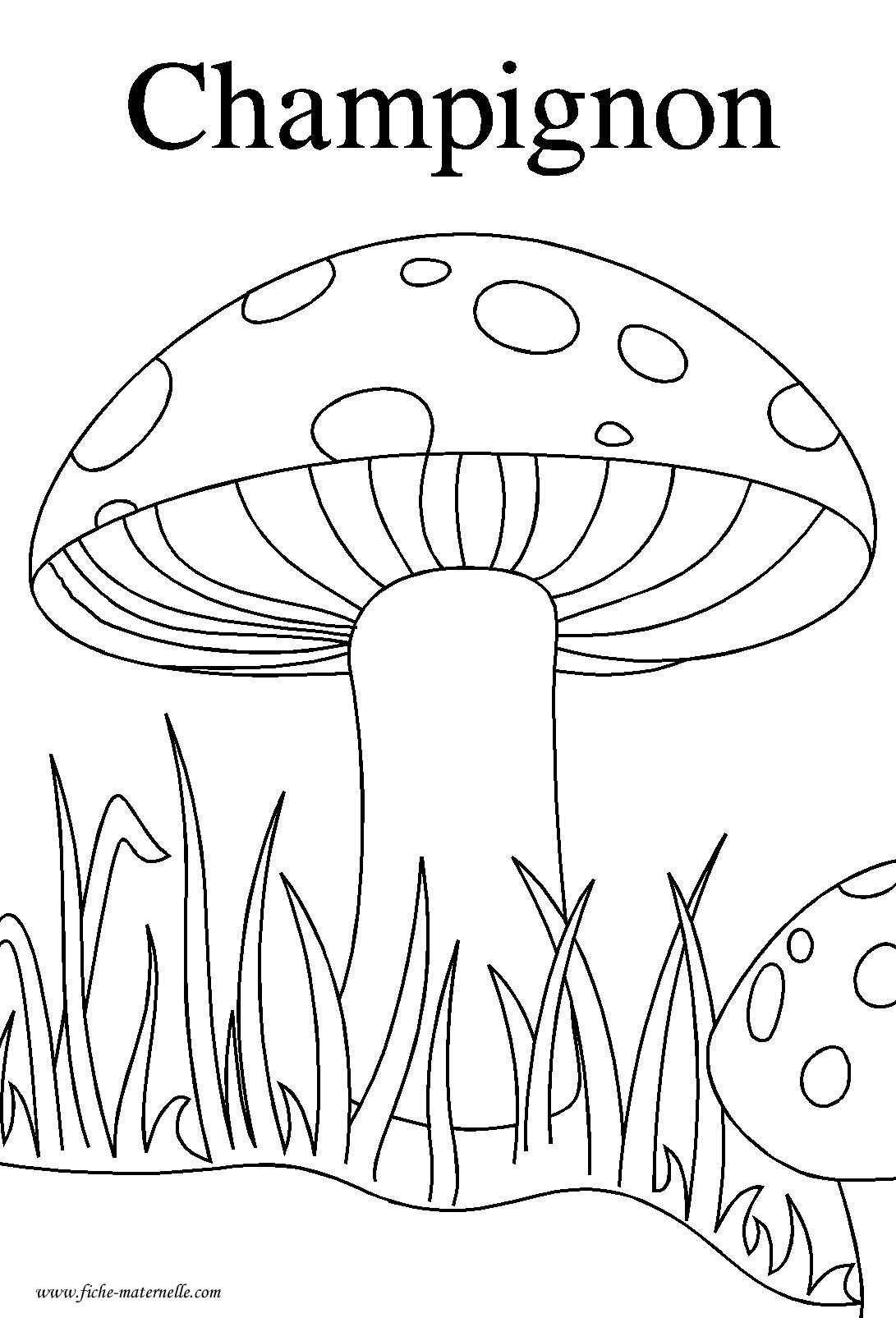 Ressources p dagogiques puzzle sur le th me de l 39 automne - L automne dessin ...