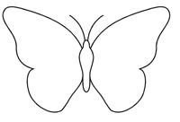 Effets graphiques en art plastique lignes qui dessinent la silhouette d 39 un animal - Silhouette papillon imprimer ...